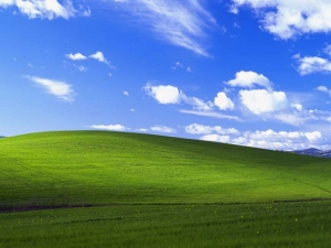 WindowsXPMeadow