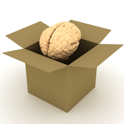 BrainInABox