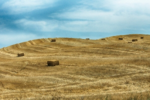 Straw Bales on Hill Landscape, Tuscany, Italy